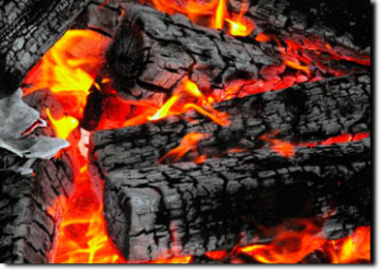 GOOD QUALITY FIREWOOD FOR SALE, WE DELIVER !!!, Visit http://www.treefellingguy.co.za